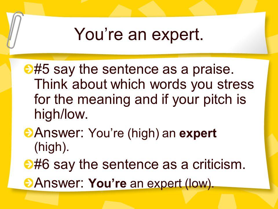 You're an expert.#5 say the sentence as a praise.
