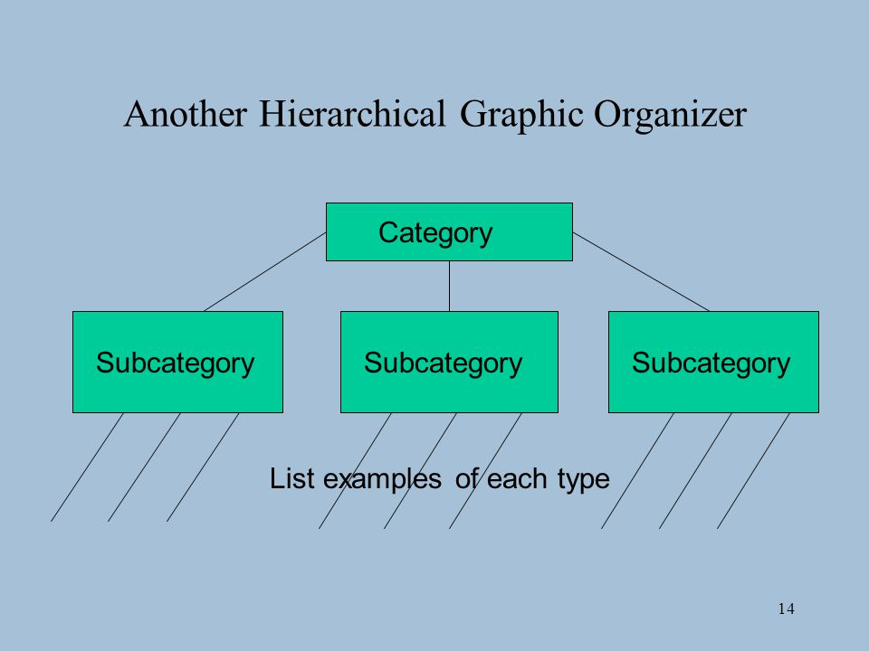 14 Another Hierarchical Graphic Organizer Category Subcategory List examples of each type