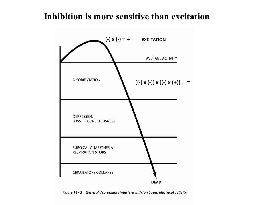 Inhibition is more sensitive than excitation