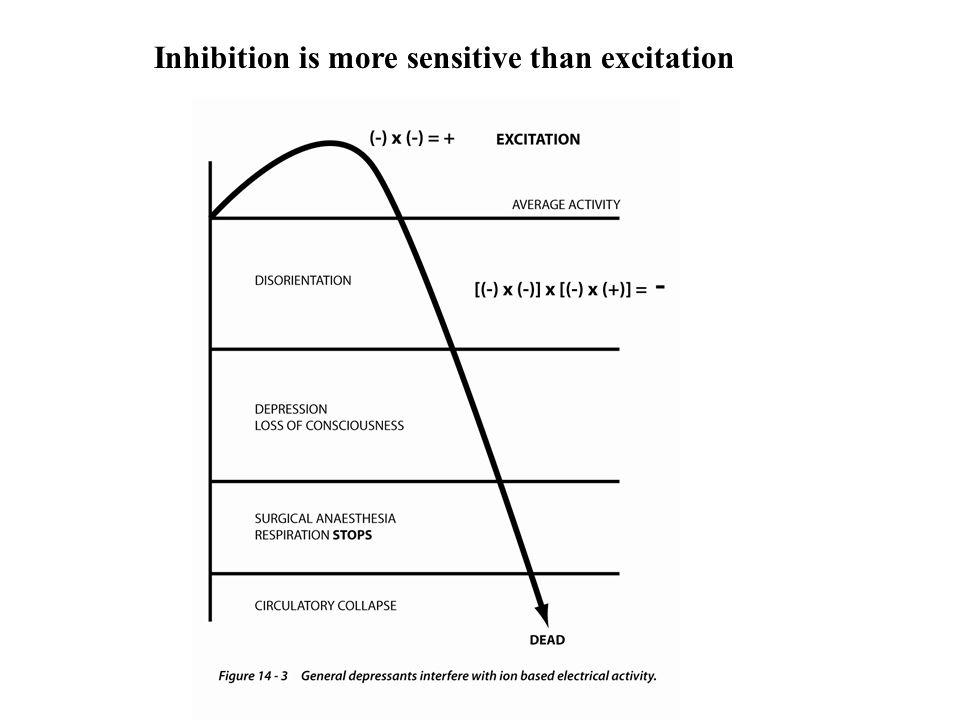 Barbiturates Sedatives and hypnotics Non-selective general depression of electrical activity Barbituric acid, pentobarbital, seconal, pentothal- How long they last