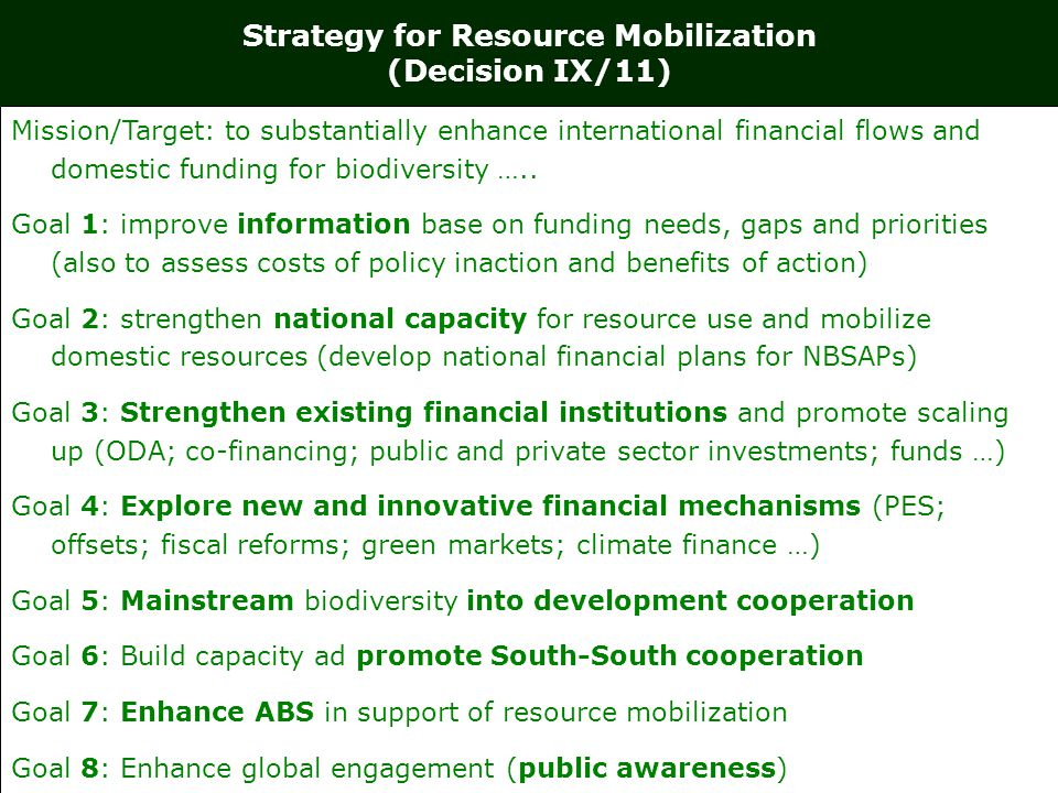RESOURCE MOBILIZATION IN NAGOYA (COP-10) RESOURCE MOBILIZATION 1.X-2: has Target 20 2.X 3: has the following: Methodological and implementation guidance on indicators Determination of baselines Views on targets Review of goals 1,3,4, 6 and 8 FINANCIAL MECHANISM 3.