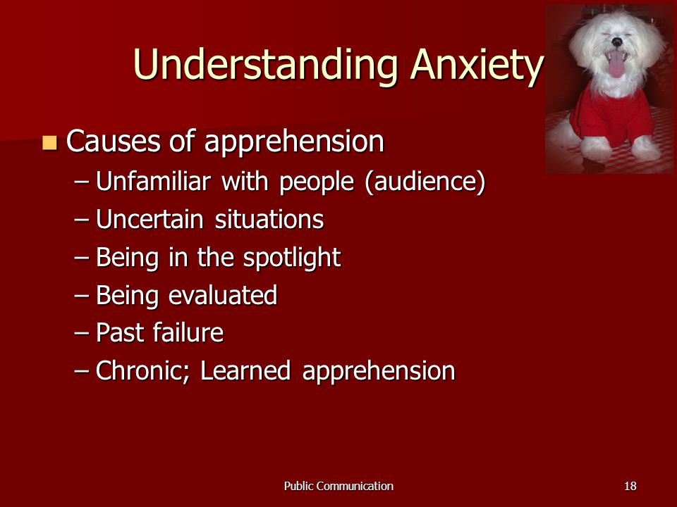 Public Communication18 Understanding Anxiety Causes of apprehension Causes of apprehension –Unfamiliar with people (audience) –Uncertain situations –Being in the spotlight –Being evaluated –Past failure –Chronic; Learned apprehension