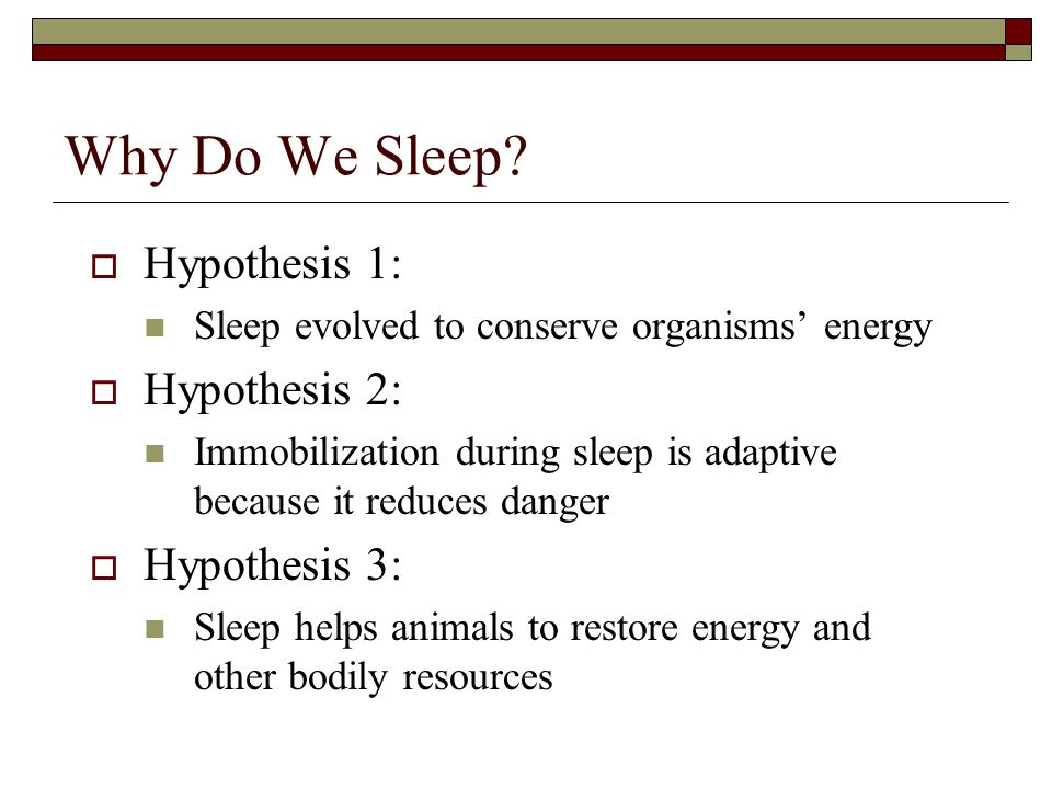 Why Do We Sleep?  Hypothesis 1: Sleep evolved to conserve organisms' energy  Hypothesis 2: Immobilization during sleep is adaptive because it reduce