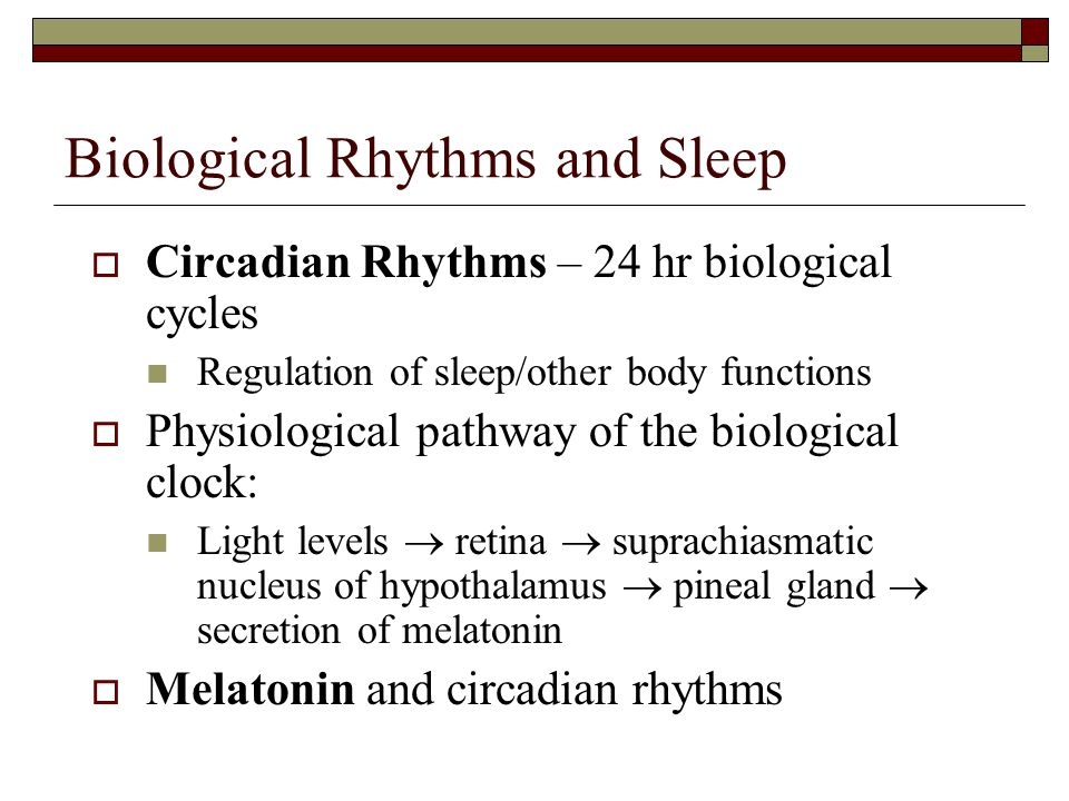 Biological Rhythms and Sleep  Circadian Rhythms – 24 hr biological cycles Regulation of sleep/other body functions  Physiological pathway of the biological clock: Light levels  retina  suprachiasmatic nucleus of hypothalamus  pineal gland  secretion of melatonin  Melatonin and circadian rhythms