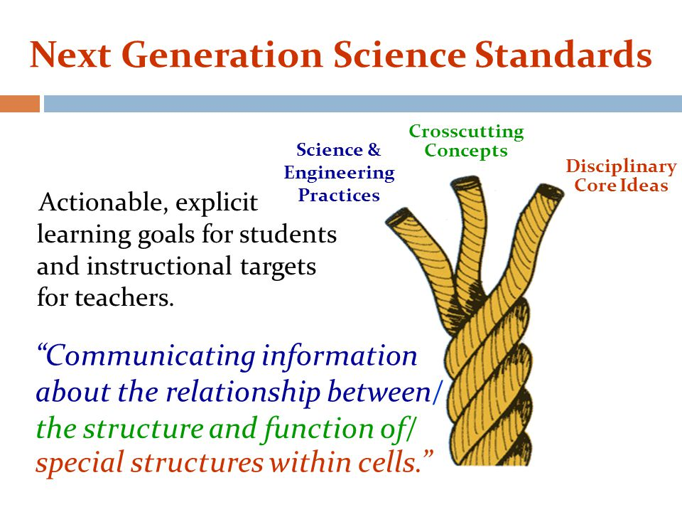 Disciplinary Core Ideas Science & Engineering Practices Crosscutting Concepts Communicating information about the relationship between/ Next Generation Science Standards Actionable, explicit learning goals for students and instructional targets for teachers.