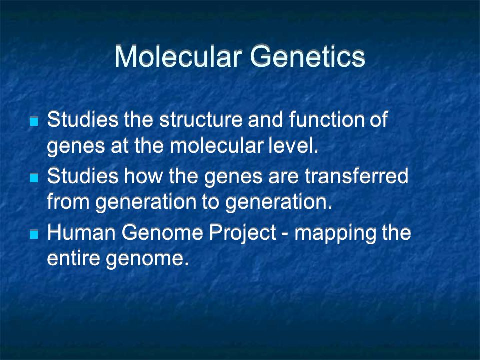 Molecular Genetics Studies the structure and function of genes at the molecular level.