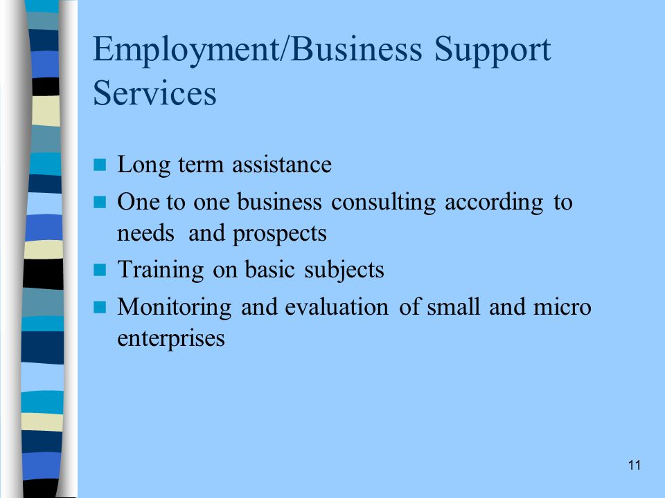 11 Employment/Business Support Services Long term assistance One to one business consulting according to needs and prospects Training on basic subjects Monitoring and evaluation of small and micro enterprises