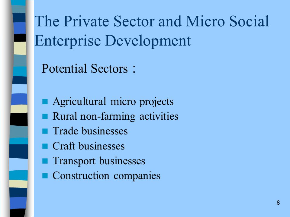 8 The Private Sector and Micro Social Enterprise Development Potential Sectors : Agricultural micro projects Rural non-farming activities Trade businesses Craft businesses Transport businesses Construction companies