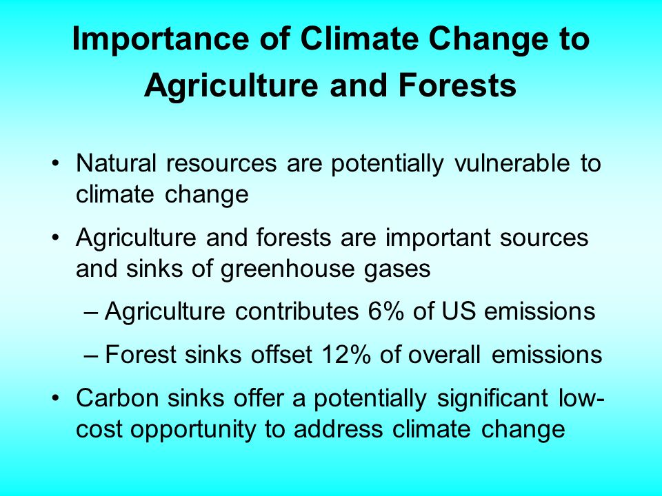 Importance of Climate Change to Agriculture and Forests Natural resources are potentially vulnerable to climate change Agriculture and forests are important sources and sinks of greenhouse gases –Agriculture contributes 6% of US emissions –Forest sinks offset 12% of overall emissions Carbon sinks offer a potentially significant low- cost opportunity to address climate change