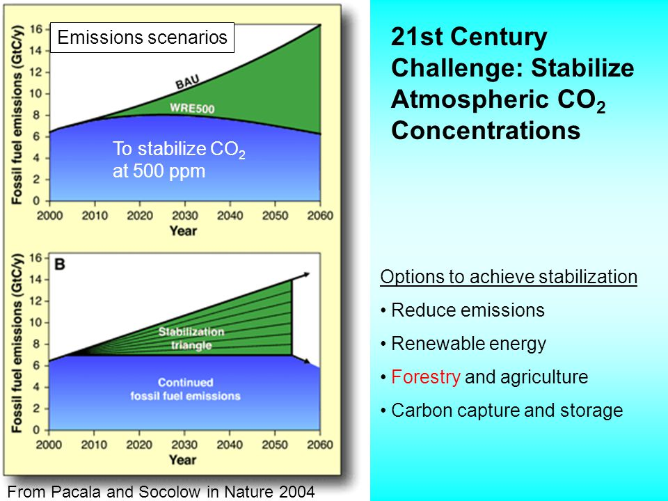 Potential Role of Forests in Mitigating Greenhouse Gas Emissions U.S.