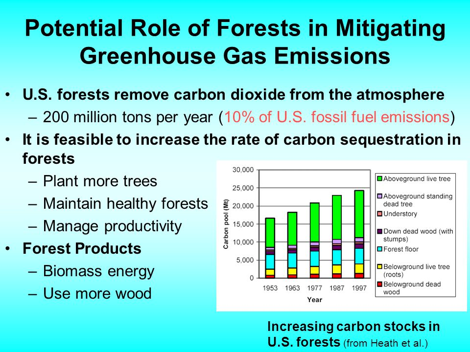 The United States Plan for Reducing Greenhouse Gases The National Greenhouse Gas Registry In 2002, the President directed Secretaries of Energy and Agriculture to revise guidelines for reporting Registry may support a market for transferable credits Take into account emerging domestic and international approaches Implementation Program is voluntary Develop new targeted incentives for carbon sequestration and greenhouse gas reductions Research and development