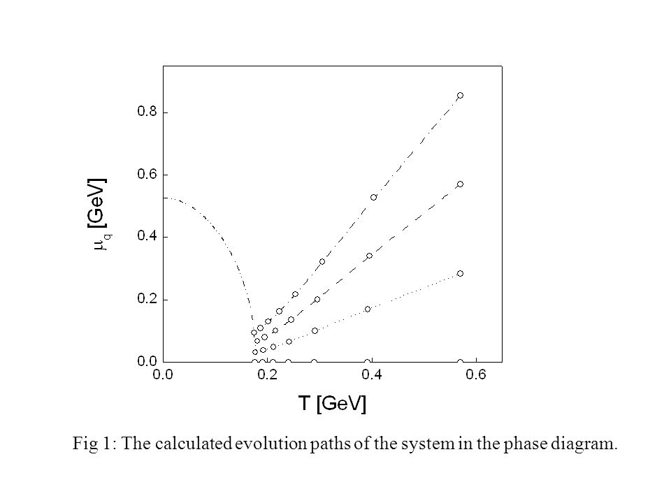 Fig 1: The calculated evolution paths of the system in the phase diagram.