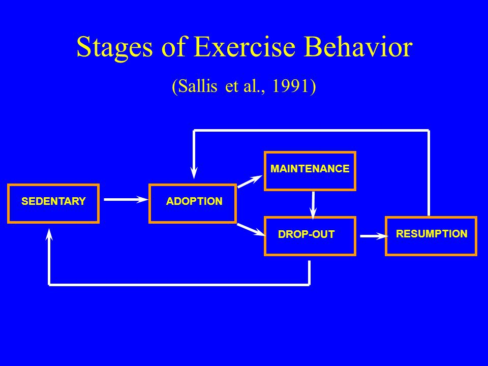 Stages of Exercise Behavior (Sallis et al., 1991) SEDENTARYADOPTION MAINTENANCE DROP-OUT RESUMPTION
