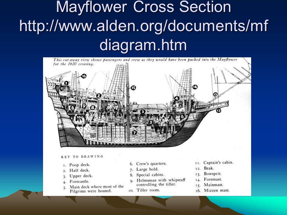 Mayflower Cross Section http://www.alden.org/documents/mf diagram.htm