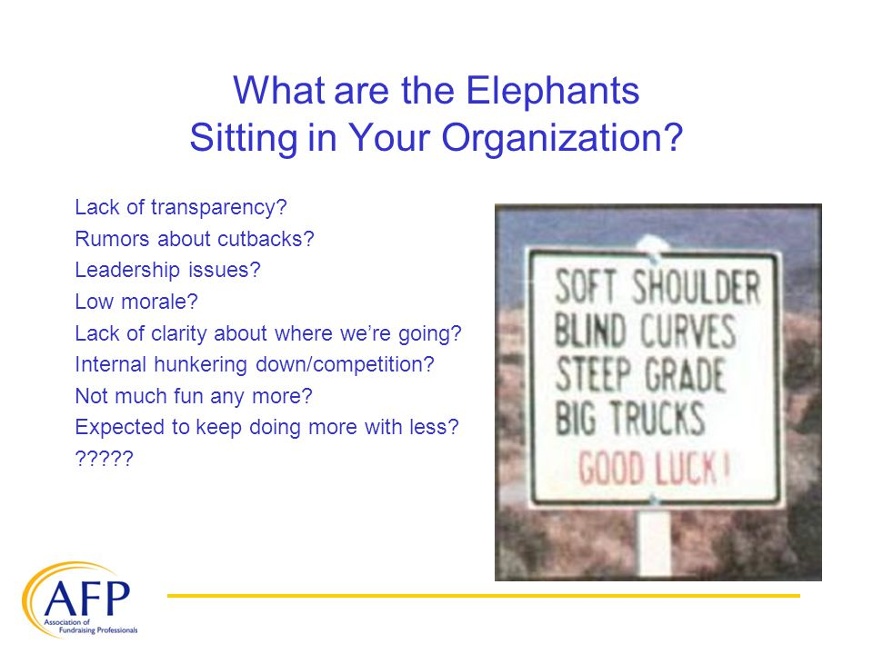What are the Elephants Sitting in Your Organization? Lack of transparency? Rumors about cutbacks? Leadership issues? Low morale? Lack of clarity about