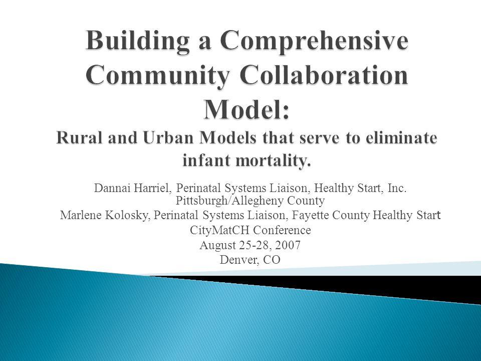 Dannai Harriel, Perinatal Systems Liaison, Healthy Start, Inc. Pittsburgh/Allegheny County Marlene Kolosky, Perinatal Systems Liaison, Fayette County