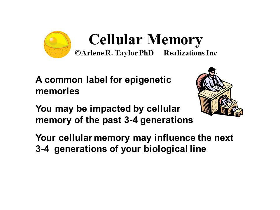 Cellular Memory  Arlene R. Taylor PhD Realizations Inc A common label for epigenetic memories You may be impacted by cellular memory of the past 3-4