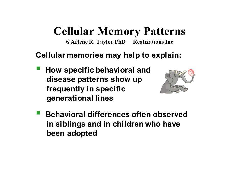 Cellular Memory Patterns  Arlene R.