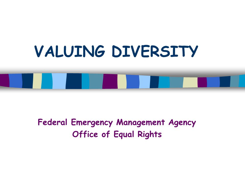 VALUING DIVERSITY Federal Emergency Management Agency Office of Equal Rights