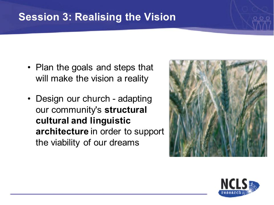 Session 3: Realising the Vision Plan the goals and steps that will make the vision a reality Design our church - adapting our community s structural cultural and linguistic architecture in order to support the viability of our dreams