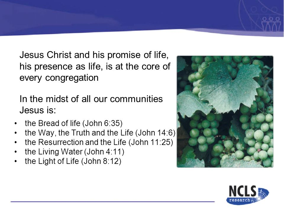 Jesus Christ and his promise of life, his presence as life, is at the core of every congregation In the midst of all our communities Jesus is: the Bread of life (John 6:35) the Way, the Truth and the Life (John 14:6) the Resurrection and the Life (John 11:25) the Living Water (John 4:11) the Light of Life (John 8:12)