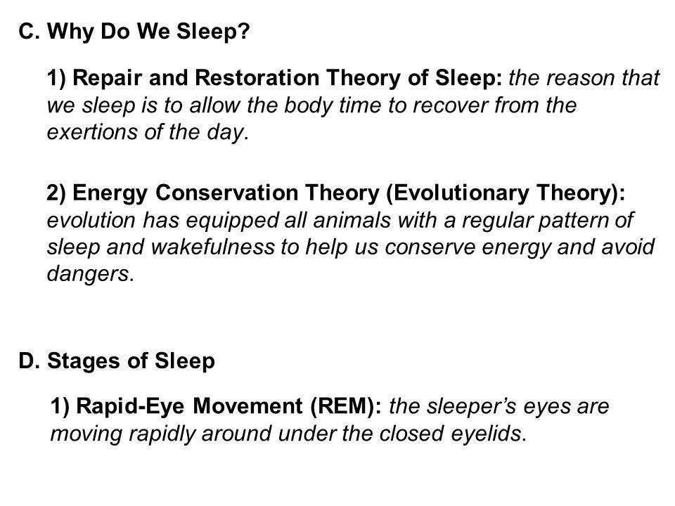C. Why Do We Sleep.