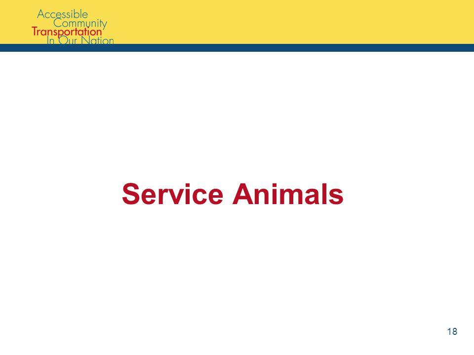 Service Animals 18