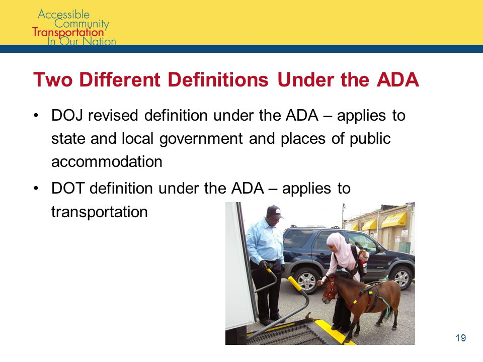 Two Different Definitions Under the ADA DOJ revised definition under the ADA – applies to state and local government and places of public accommodation DOT definition under the ADA – applies to transportation 19