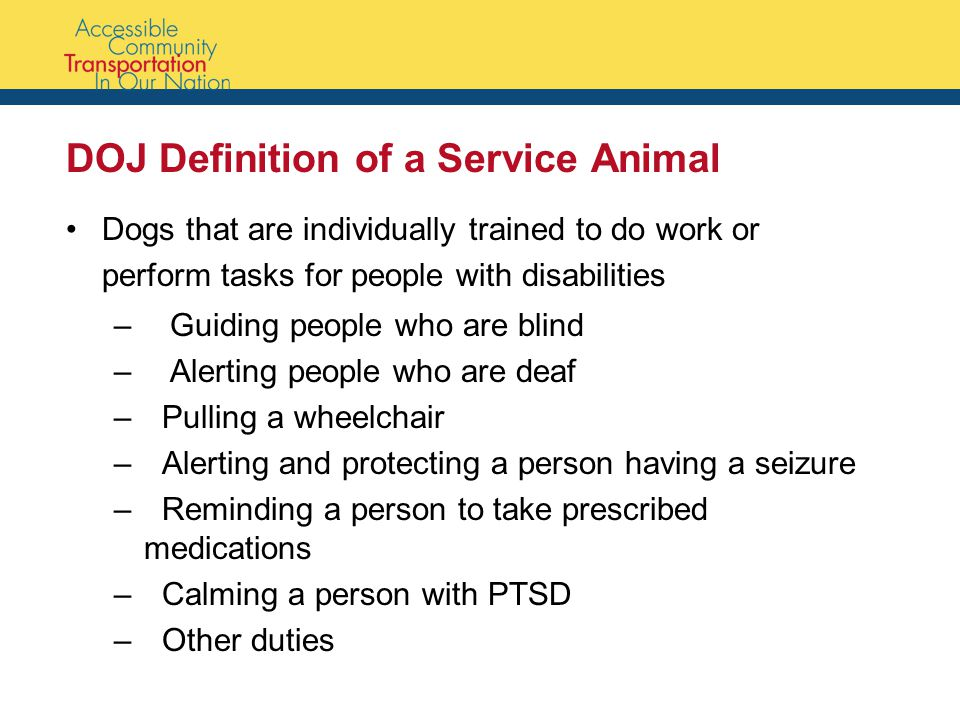 DOJ Definition of a Service Animal Dogs that are individually trained to do work or perform tasks for people with disabilities – Guiding people who are blind – Alerting people who are deaf –Pulling a wheelchair –Alerting and protecting a person having a seizure –Reminding a person to take prescribed medications –Calming a person with PTSD –Other duties