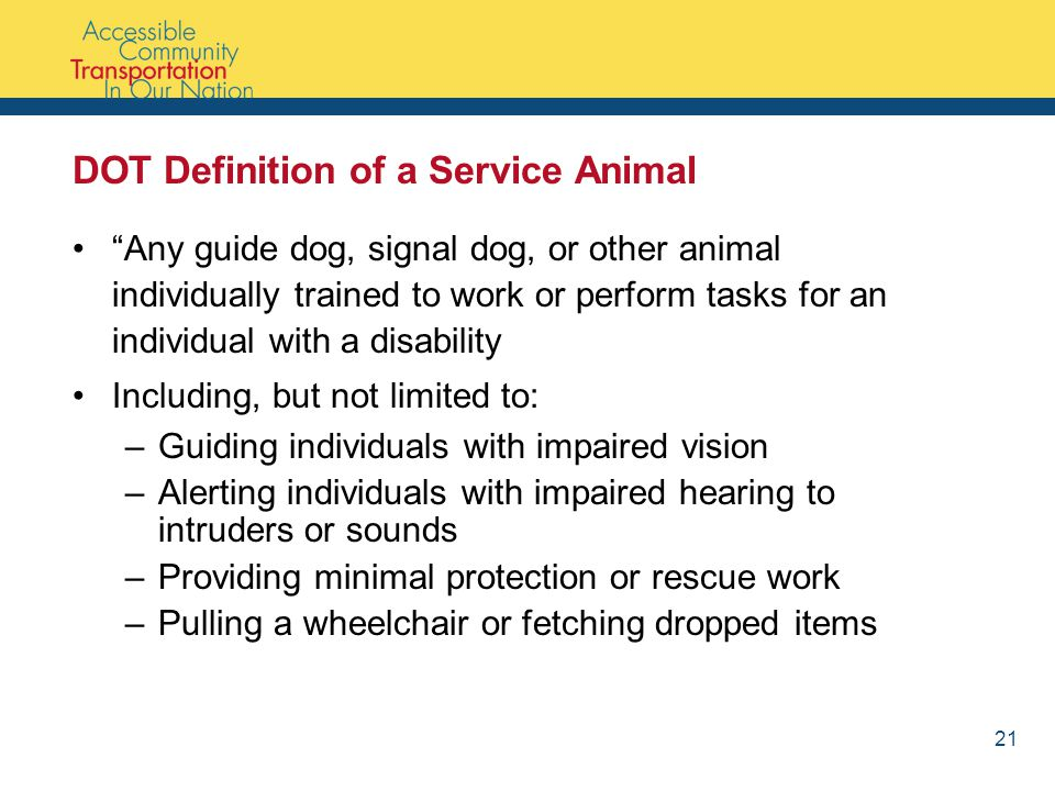 DOT Definition of a Service Animal Any guide dog, signal dog, or other animal individually trained to work or perform tasks for an individual with a disability Including, but not limited to: –Guiding individuals with impaired vision –Alerting individuals with impaired hearing to intruders or sounds –Providing minimal protection or rescue work –Pulling a wheelchair or fetching dropped items 21