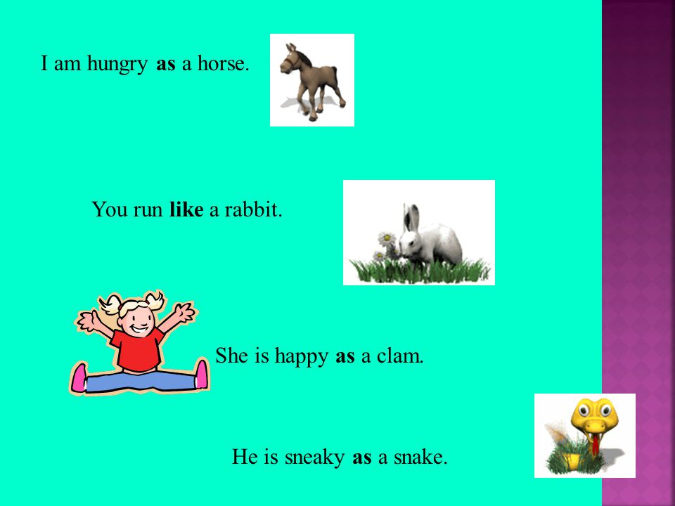 I am hungry as a horse. You run like a rabbit. He is sneaky as a snake. She is happy as a clam.