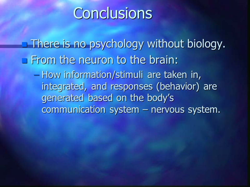 Conclusions n There is no psychology without biology. n From the neuron to the brain: –How information/stimuli are taken in, integrated, and responses