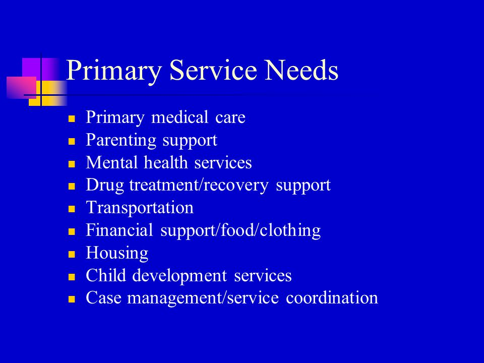 Primary Service Needs Primary medical care Parenting support Mental health services Drug treatment/recovery support Transportation Financial support/f
