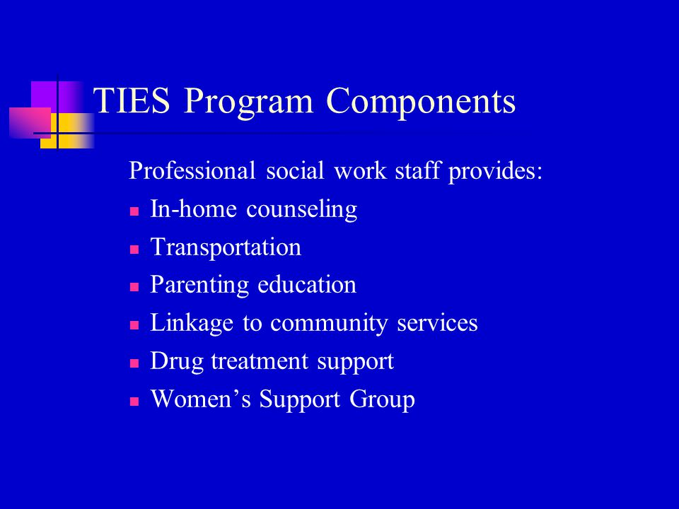 TIES Program Components Professional social work staff provides: In-home counseling Transportation Parenting education Linkage to community services D
