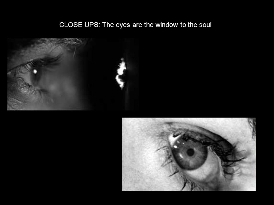 CLOSE UPS: The eyes are the window to the soul