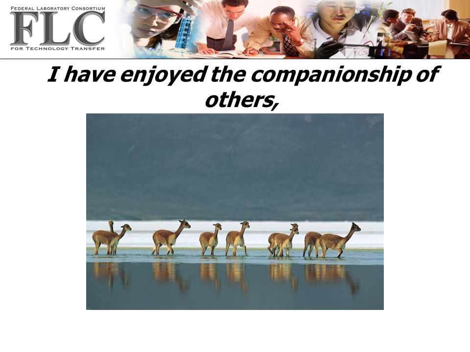 I have enjoyed the companionship of others,