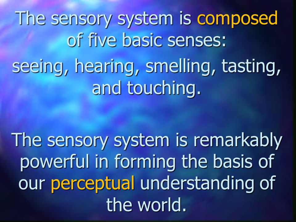 The sensory system is composed of five basic senses: seeing, hearing, smelling, tasting, and touching.