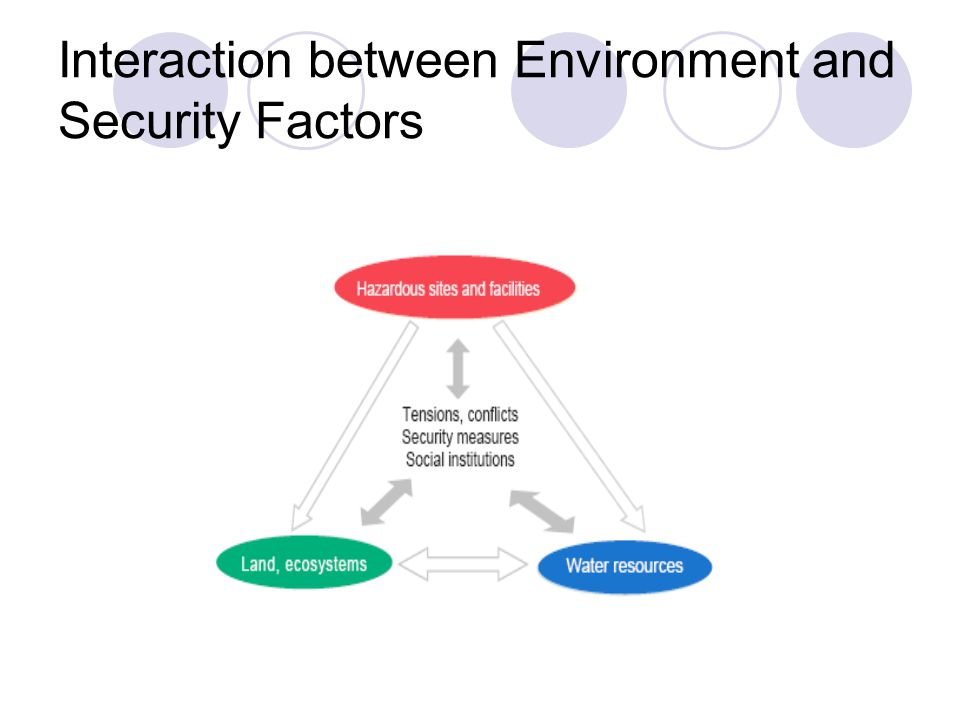 Interaction between Environment and Security Factors