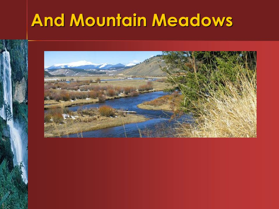 And Mountain Meadows