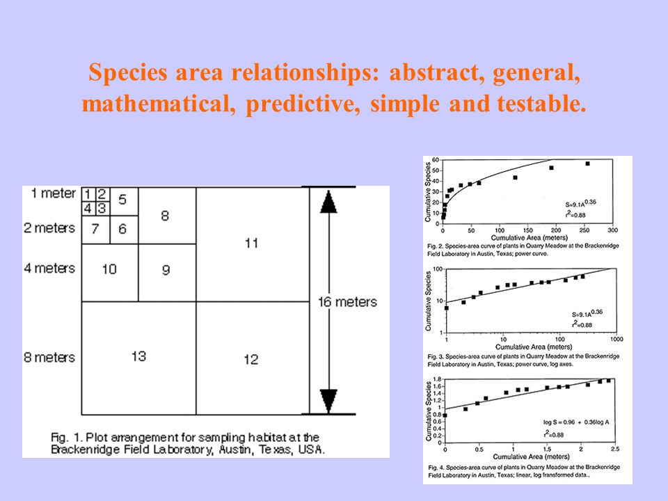 Species area relationships: abstract, general, mathematical, predictive, simple and testable.