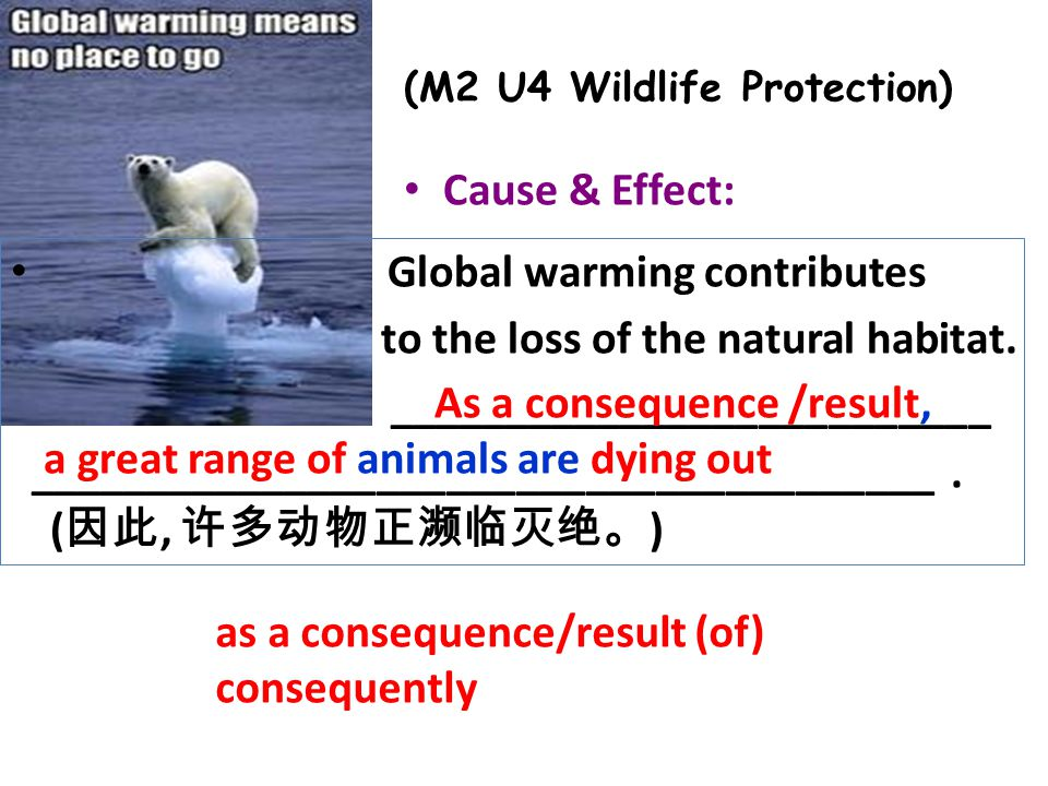 Cause & Effect: as a consequence/result (of) consequently (M2 U4 Wildlife Protection) Global warming contributes to the loss of the natural habitat.