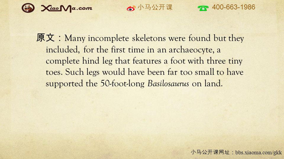 小马公开课 400-663-1986 小马公开课网址: bbs.xiaoma.com/gkk 原文: Many incomplete skeletons were found but they included, for the first time in an archaeocyte, a complete hind leg that features a foot with three tiny toes.
