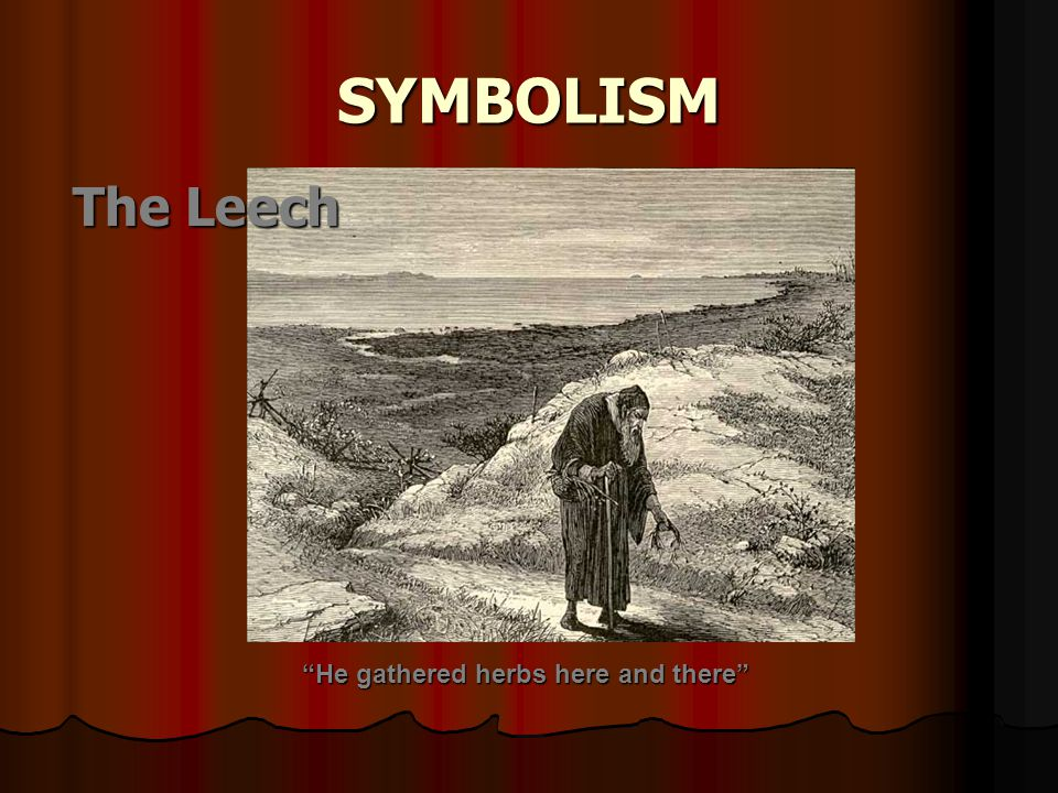 "SYMBOLISM The Leech ""He gathered herbs here and there"""