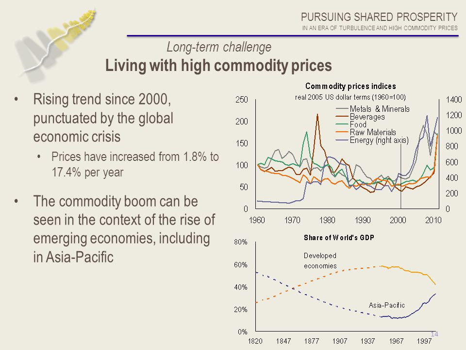 14 Long-term challenge Living with high commodity prices Rising trend since 2000, punctuated by the global economic crisis Prices have increased from