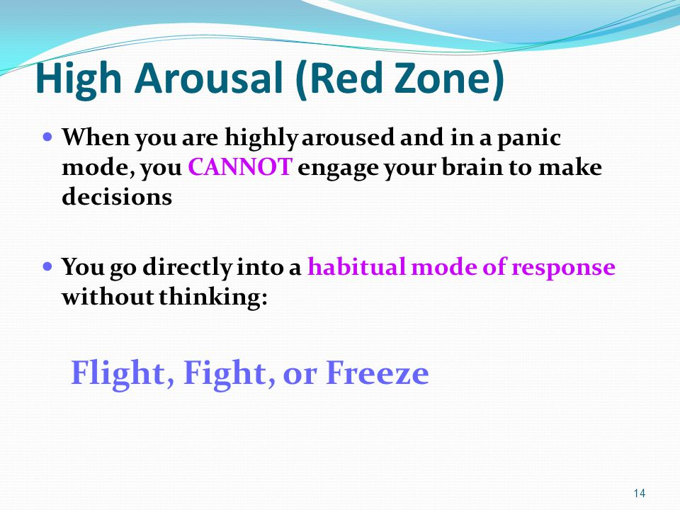 High Arousal (Red Zone) When you are highly aroused and in a panic mode, you CANNOT engage your brain to make decisions You go directly into a habitual mode of response without thinking: Flight, Fight, or Freeze 14