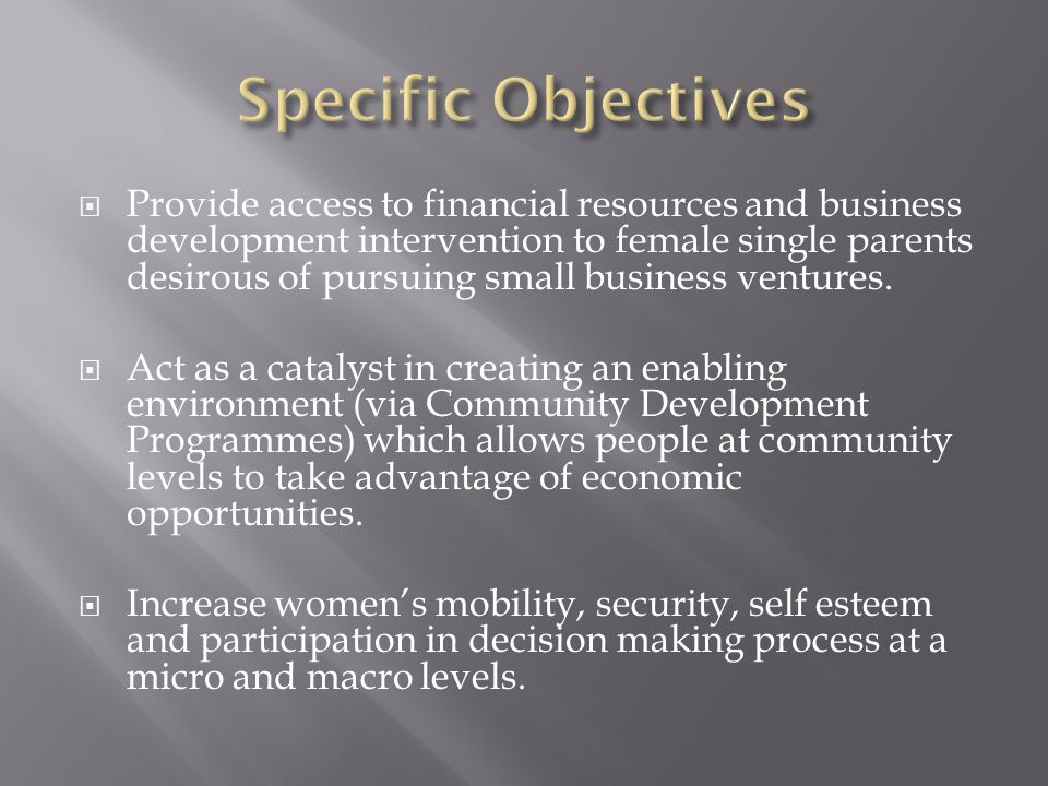  Provide access to financial resources and business development intervention to female single parents desirous of pursuing small business ventures. 