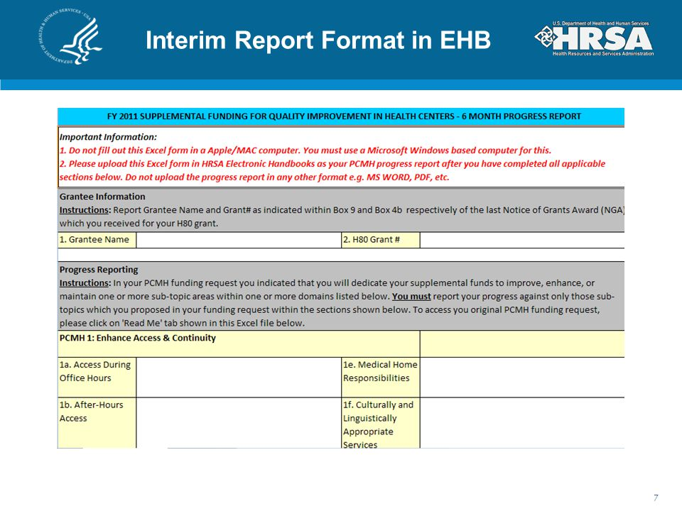 Interim Report Format in EHB 7