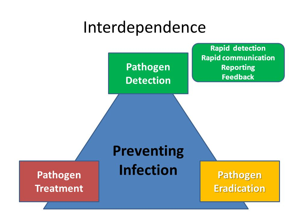 Interdependence Preventing Infection Pathogen Detection PathogenEradication Pathogen Treatment Rapid detection Rapid communication Reporting Feedback