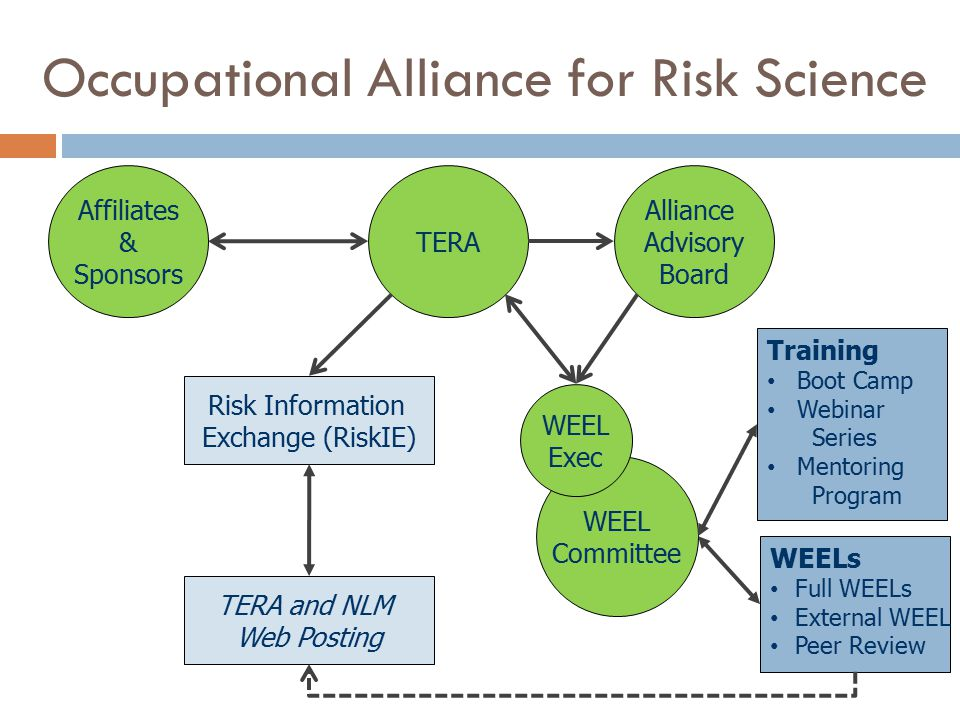 Risk Information Exchange (RiskIE) WEELs Full WEELs External WEEL Peer Review TERA and NLM Web Posting Training Boot Camp Webinar Series Mentoring Program WEEL Committee Alliance Advisory Board TERA WEEL Exec Affiliates & Sponsors Occupational Alliance for Risk Science