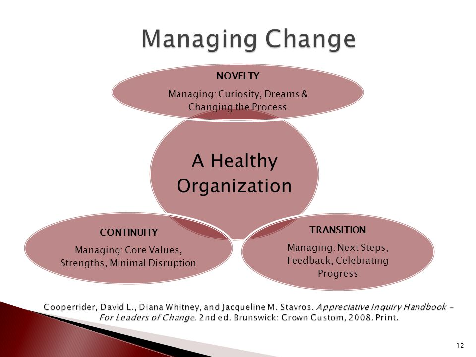 A Healthy Organization NOVELTY Managing: Curiosity, Dreams & Changing the Process TRANSITION Managing: Next Steps, Feedback, Celebrating Progress CONTINUITY Managing: Core Values, Strengths, Minimal Disruption 12